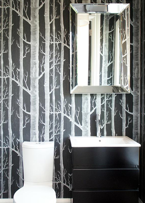 Birch trees in bathrooms mojan sami for Black and white tree wallpaper mural