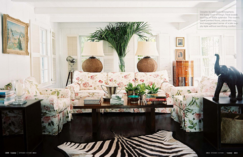 Zebra Rug in Tropical Island Living Room for Lonny Magazine